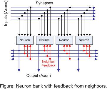Figure: Neuron bank with feedback from neighbors.